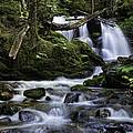 Packer Falls And Creek by Paul DeRocker