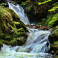 Packer Falls Vert 1 by Paul DeRocker
