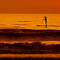Paddle Board by Jim Finch