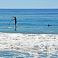 Paddle Boarder And Dolphin by Susan Wiedmann