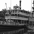 Paddle Boat Black And White Walt Disney World by Thomas Woolworth