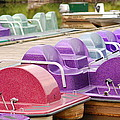 Paddle Boats by James DeFazio