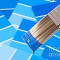 Paint Brush - Blue by Amanda Elwell
