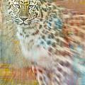 Paint Me A Cheetah by Trish Tritz