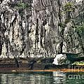 Paint Vietnam Rock by Chuck Kuhn
