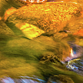 Paintbrush Creek by Optical Playground By MP Ray