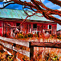 Painted Barn by Melvin Busch