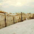 Painted Beach by Cathy Kovarik