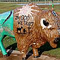 Painted Buffalo by Denise Mazzocco