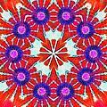 Painted Cymatics 216.00hz by Derek Gedney