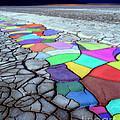Painted Desert by Edmund Nagele