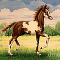 Painted Foal by Tish Wynne