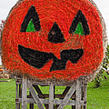 Painted Hay Bale by Les Palenik