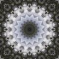 Painted Kaleidoscope 16 by Rhonda Barrett
