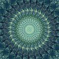 Painted Kaleidoscope 6 by Rhonda Barrett