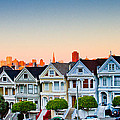 Painted Ladies by Bill Gallagher