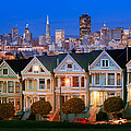 Painted Ladies by Inge Johnsson