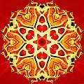 Painted Lotus Xi by Derek Gedney