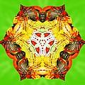 Painted Lotus Xii by Derek Gedney
