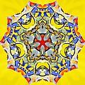 Painted Lotus Xiii by Derek Gedney