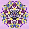 Painted Lotus Xvi by Derek Gedney