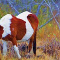 Painted Marsh Mare by Alice Gipson