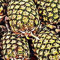 Painted Pineapples by Alice Gipson