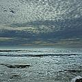 D3a6136-painted Sky Bolinas Ca  by Ed  Cooper Photography