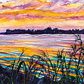 Painted Water by Patricia Allingham Carlson