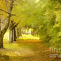 Painterly Pathway by Jim Lepard