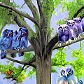 Painting Of Owls And Birds Nest In Tree by Susanna Katherine