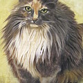 Painting Of Shelby by Sharon Burger