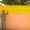 Painting The Fence by Susan Rovira