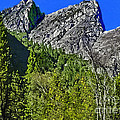 Painting Three Brothers Peaks Yosemite Np by Bob and Nadine Johnston