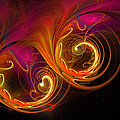 Painting With Light by Rich Stedman