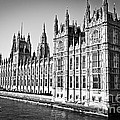 Palace Of Westminster by Elena Elisseeva