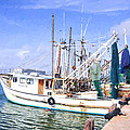 Palacios Texas Shrimp Boat Lineup by JG Thompson