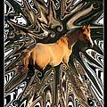 Pale Horse by Aidan Moran