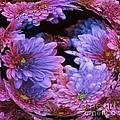 Pale Moon Flower Orb by Elizabeth McTaggart