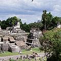 Palenque Ruins by Roy Pedersen