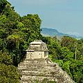 Palenque Temple by Jess Kraft
