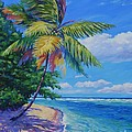 Palm At The Water's Edge by John Clark