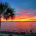 Palm Beach Sunset by Lynn Bauer