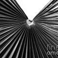 Palm Leaf 6684bw by Earl Johnson