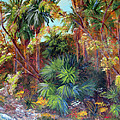 Palm Oasis by Marlene Johnson
