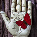 Palm Reading Hand And Butterfly by Garry Gay
