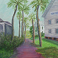 Palm Row In St. Augustine Florida by Patty Weeks