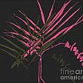 Palm Sprigs Mod by Beth Saffer