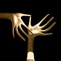 Palm Tickle by Bob Orsillo