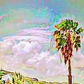 Palm Tree Against Pastel Sky - Square by Lyn Voytershark